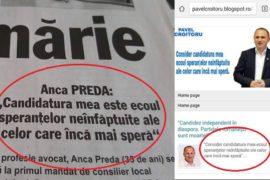 Plagiat Anca Preda