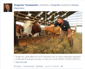 Forța de la coada vacii