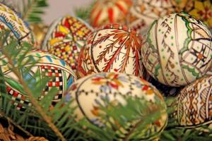 Păduraru are ou de esență tare (partea I)