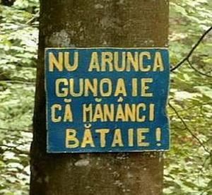 Lets_do_it_Romania_panou