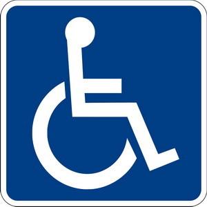 handicapati_statistica_2